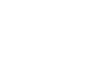 CourtFact